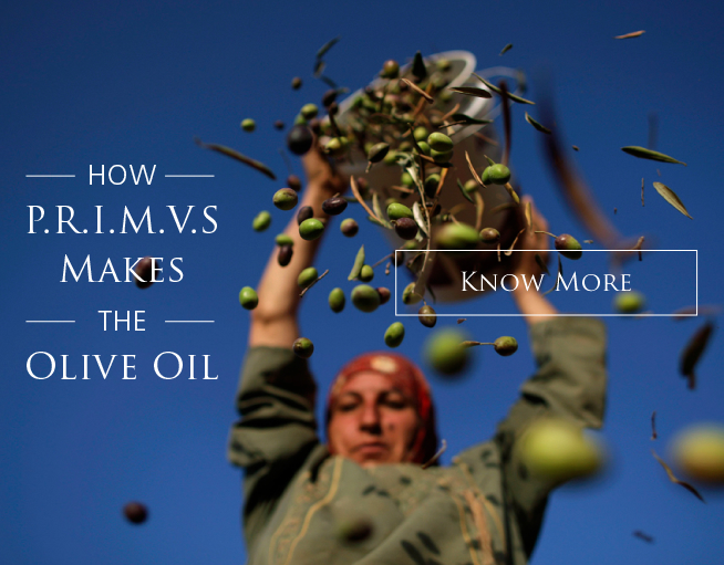 HOW P.R.I.M.V.S MAKES THE OLIVE OIL
